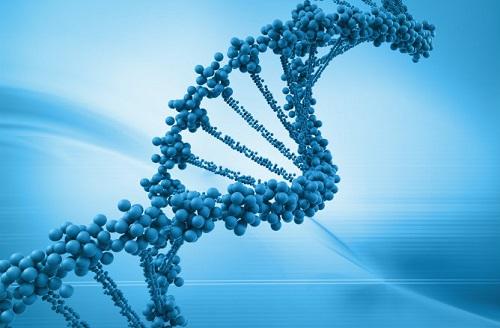 Cercetătorii au rescris codul genetic al celulei unui microb