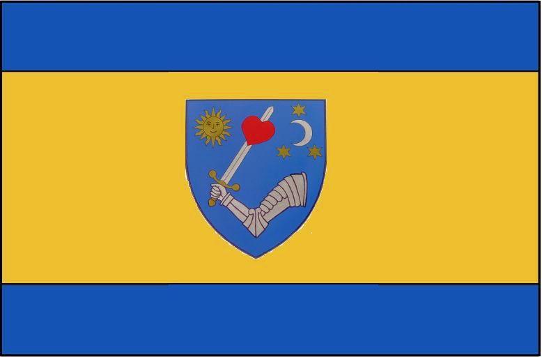 Guvernul Cîțu a adoptat prin HG steagul secuiesc al județului Covasna