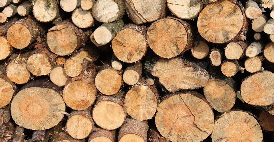 INTERZISĂ încălzirea cu lemne!Prin PNRR, România s-a angajat să renunțe la încălzirea cu lemne până în 2023